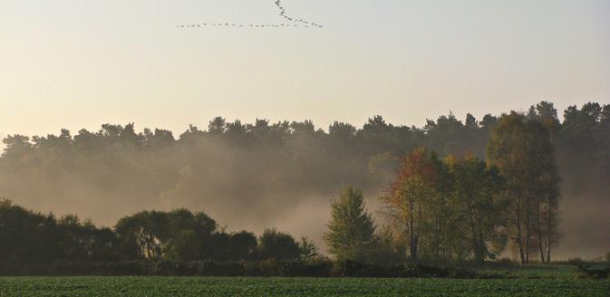 Landschaft im Wendland