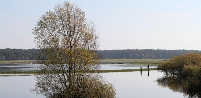 Wanderweg Elbe-Katemin-Weg im Wendland