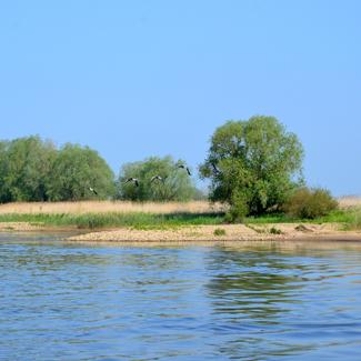 Elbe-Flossfahrt im Wendland