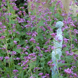 Gartenräume im Wendland