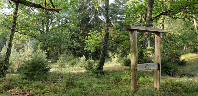 Naturlehrpfad Naturum Göhrde im Wendland