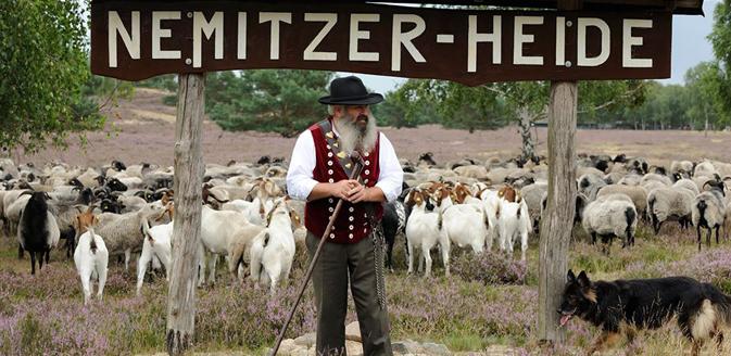 Wanderweg Nemitzer-Heide-Weg im Wendland