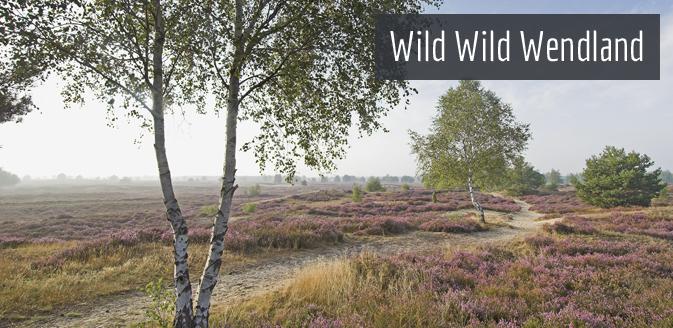 Natur in der Region Wendland-Elbe © Marketingbüro Wendland-Elbe